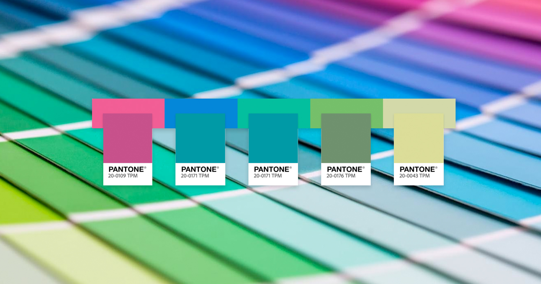 creatyum-media-pantone-por-adobe-color-cover